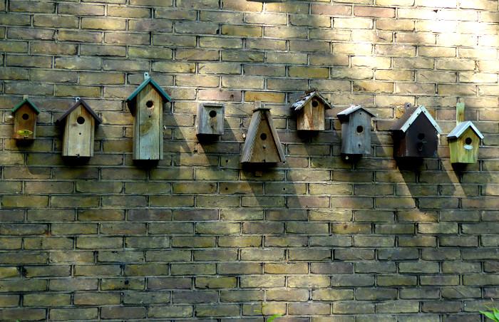 Foto van rij vogelhuisjes aan muur
