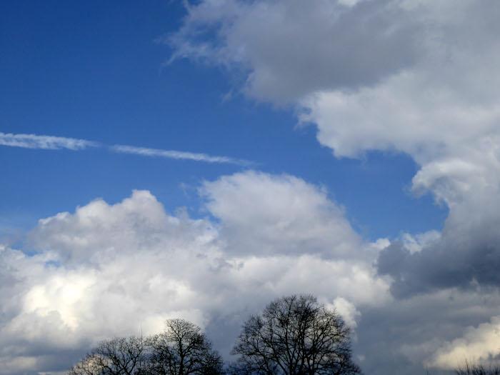 Foto van wolken en boomtoppen