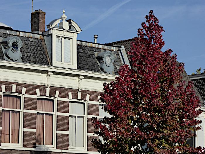 Foto van rood kleuerende boom voor fraai pand