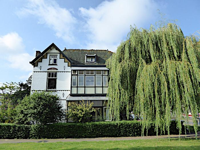 Foto van villa en boom