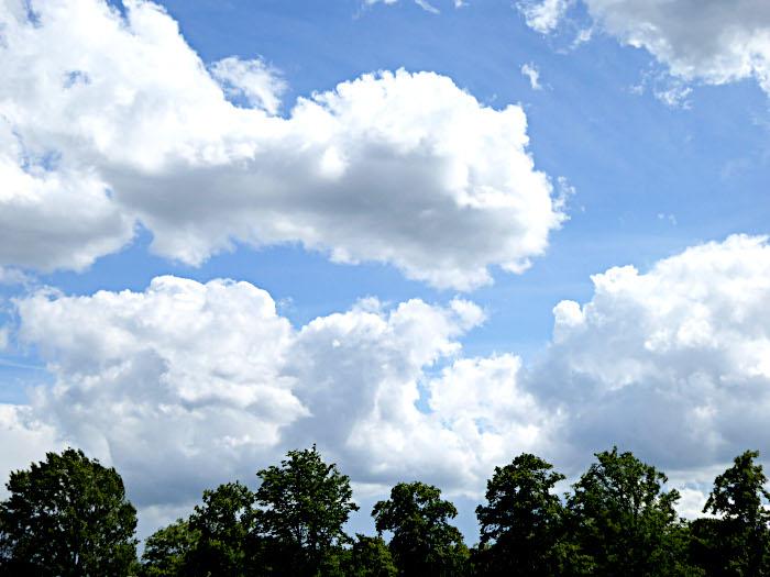 Foto van wolkenlucht boven boomtoppen
