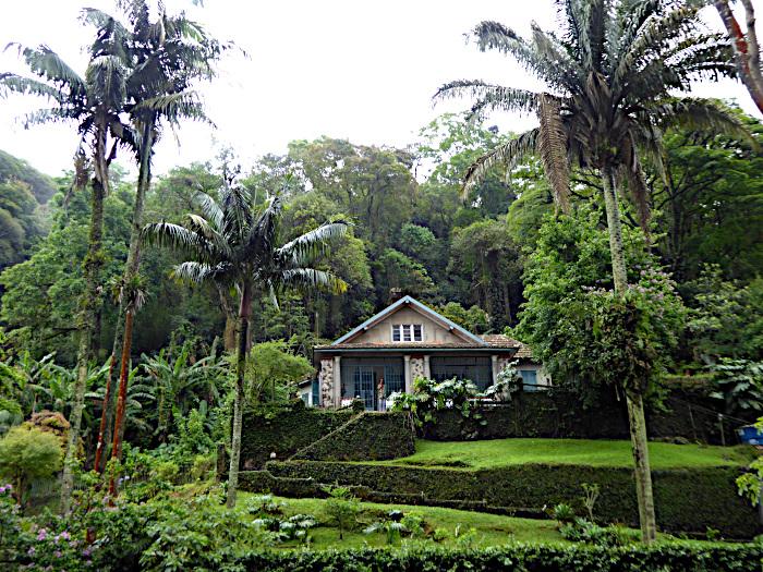 Foto van huis tussen struiken en bomen