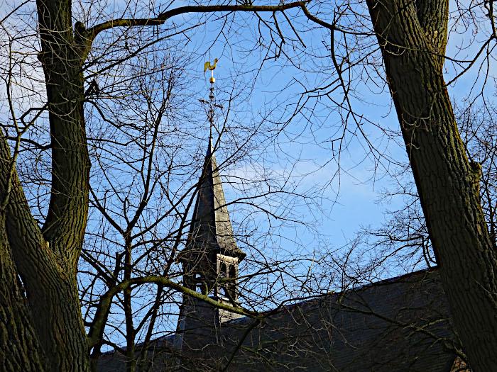 Foto van kerktoren met windhaan tussen bomen