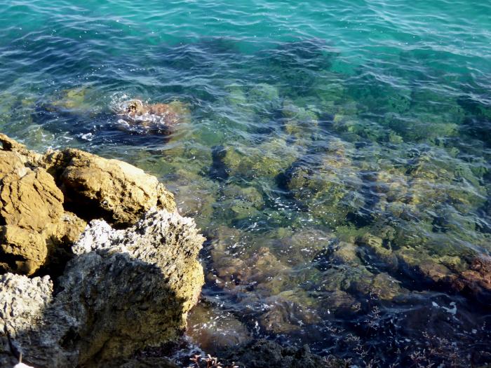 Foto van rotsen naast en in zee