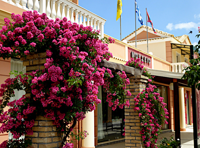 Foto van gevel van museum met bloemen