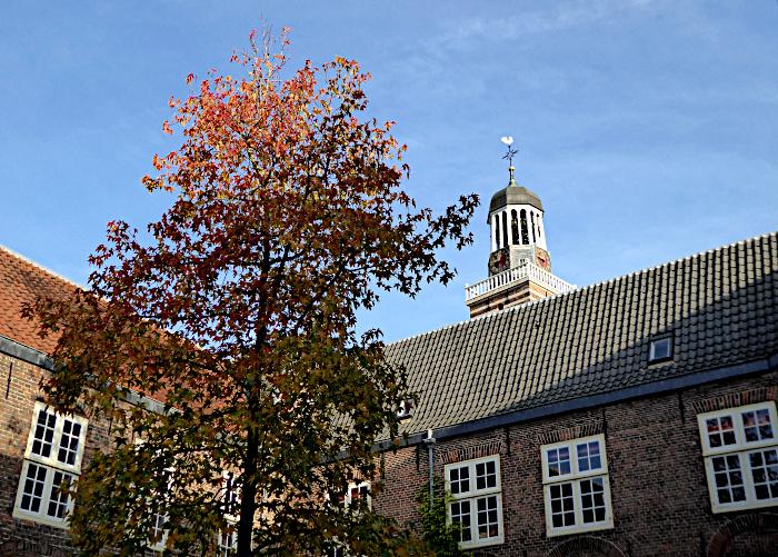 Foto van verkleurende boom in hoffje, torenspits Nicolaikerk