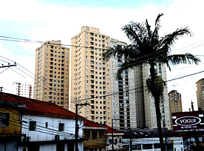 Foto van palmboom en hoogbouw