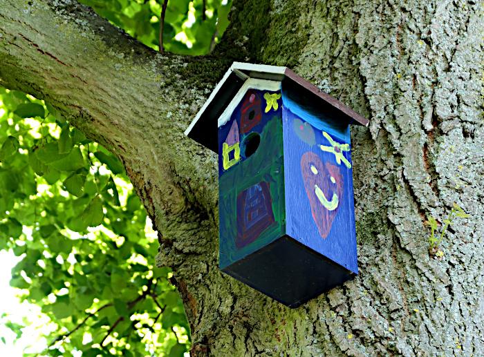 Foto van vrolijk beschilderd vogelhuisje