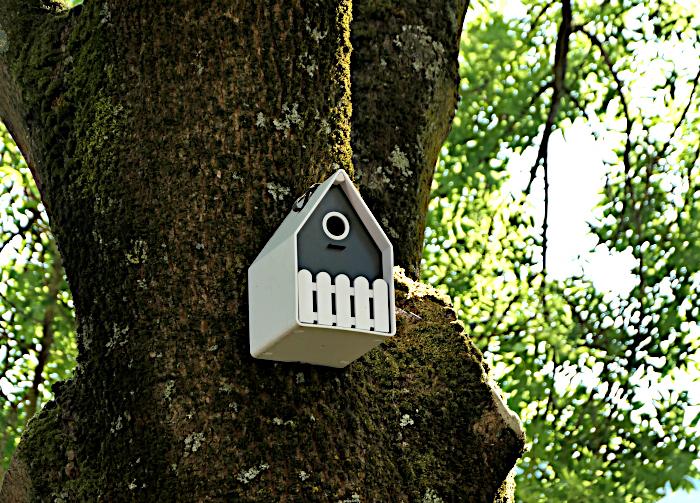 Foto van modern vogelhuisje aan boom