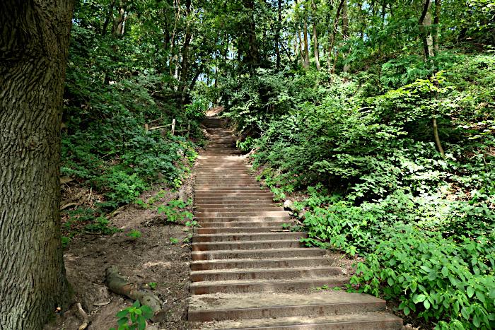 Foto van ijzeren trap in bos