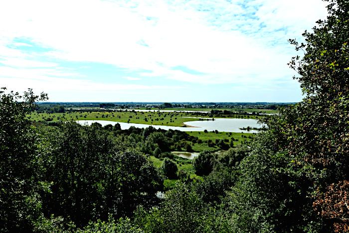 Foto van rivierengebied