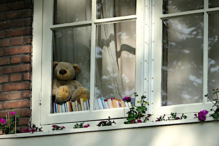 Foto van speelgoedbeer op boeken achter raam