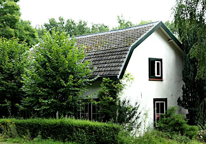 Foto van huis tussen begroeiing