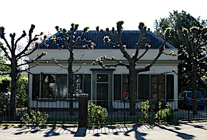 Foto van huis en bomen in tegenlicht