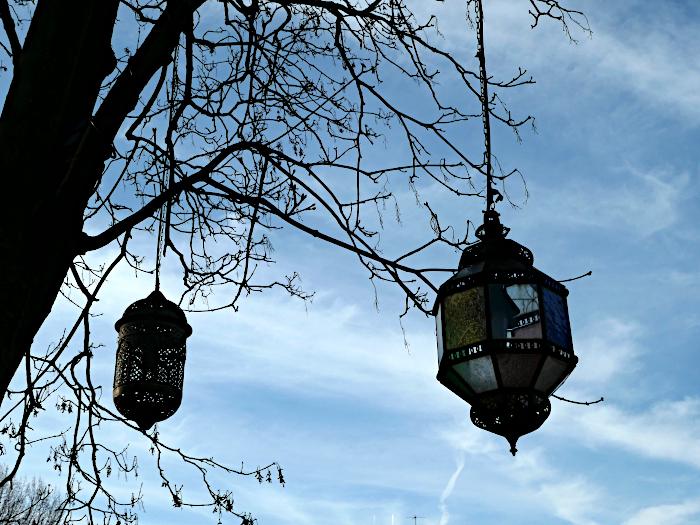 Foto van lampen hangend aan boom