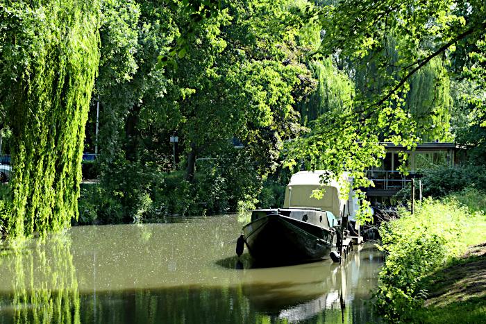 Foto van bootje in water lange bomen