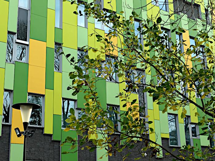 Foto  van bladertak, lantaarn en gebouw met groene en gele panelen