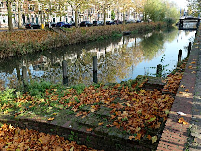 Foto van singel met herfstbladeren op oever