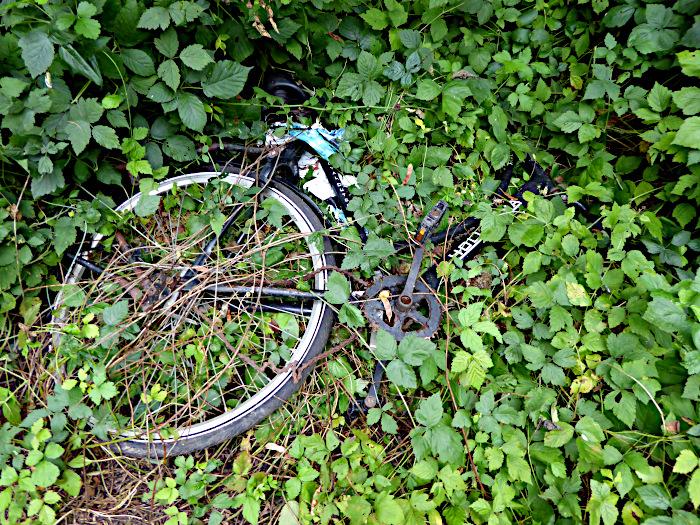 Foto van fietswrak tussen het groen